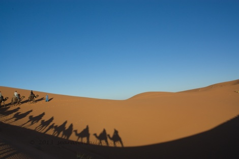 in a camel caravan through into the Saharan dunes