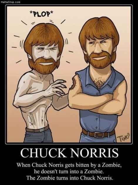 chuck norris, brilliant